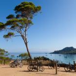 Cruise Partner of the Week: Var Provence Cruise Club - Κεντρική Εικόνα