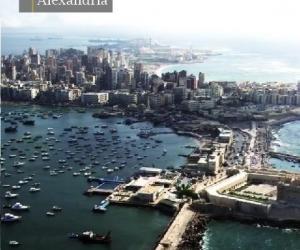 Egyptian Ports - Media Gallery 16