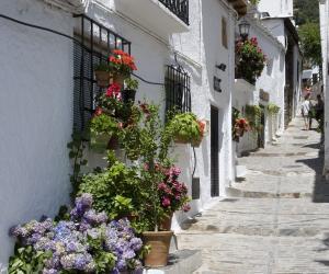 Motril-Granada - Media Gallery 29